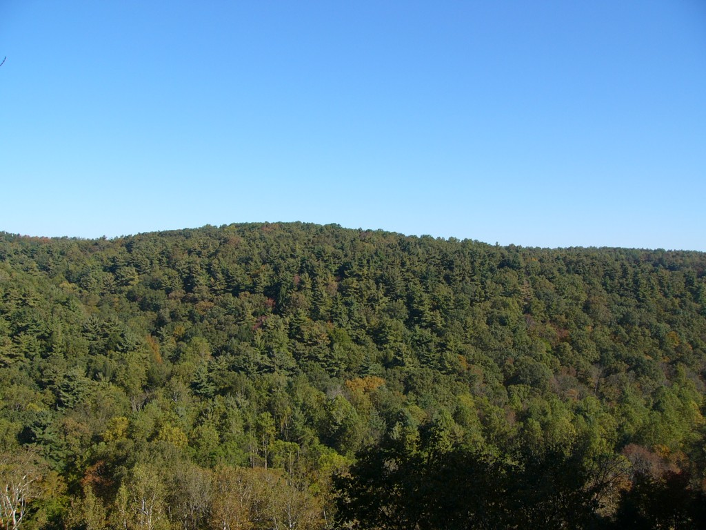 Mohican Clear Fork Gorge