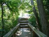 Deer-Creek-Hiking-Trail