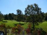 Salt-Fork-Golf-Course